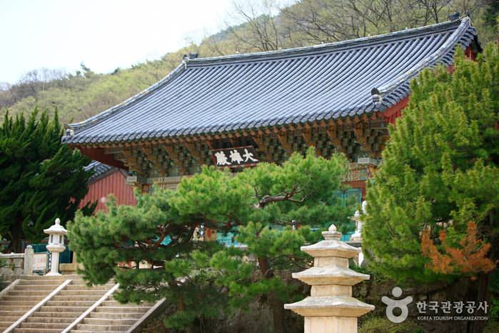 2 Days Korea UNESCO Tours Busan Changwon Daegu