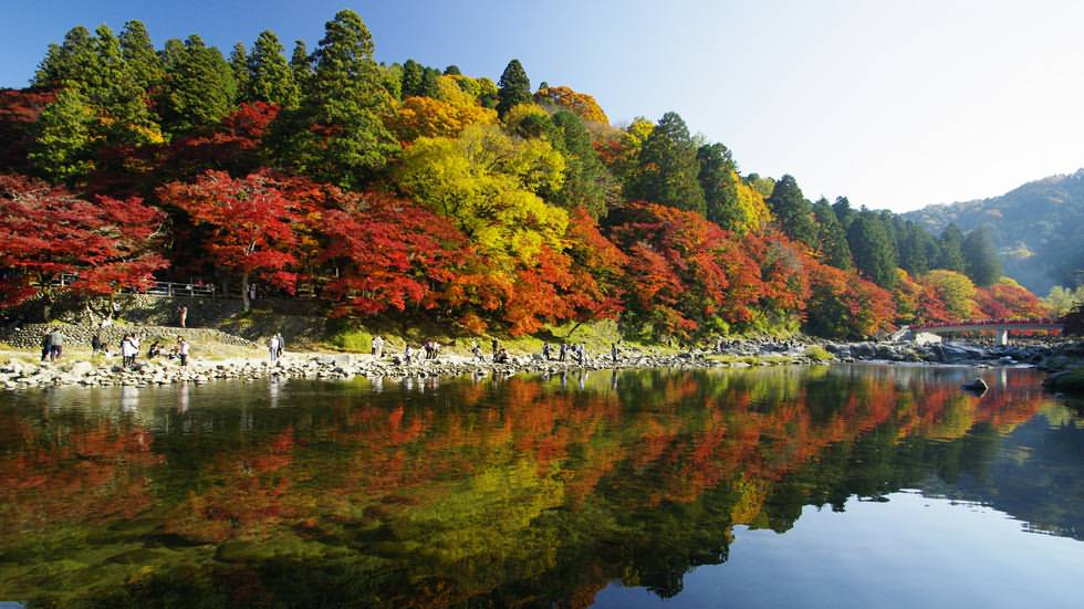 5 Days Japan UNESCO Tours Nagoya Toyama Shirakawa-go Takayama