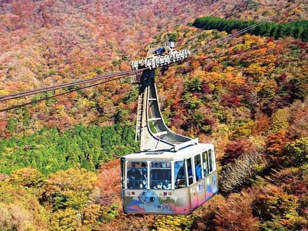 4 Days Japan Family & Kids-friendly Tours Tokyo Hakone Mt.Fuji