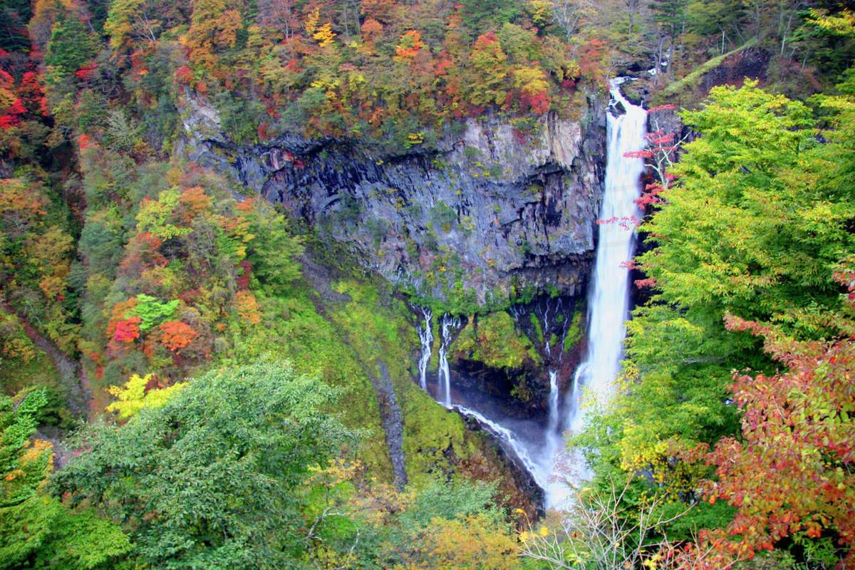 7 Days Japan UNESCO Tours Mt.Fuji Hakone Osaka Nara Kyoto Nikko