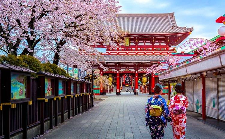 6 Days Japan Family & Kids-friendly Tours Tokyo Mt.Fuji