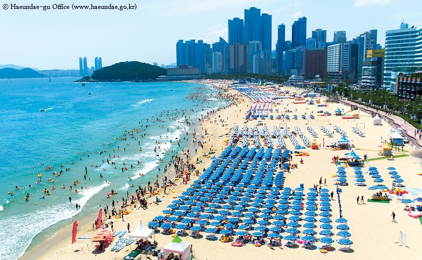 1 Days Korea Senior Tours Busan