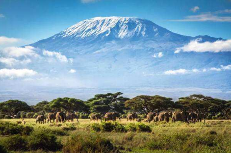 13 days Arusha Tarangire National Park Serengeti National Park Ngorongoro Zanzibar-tour