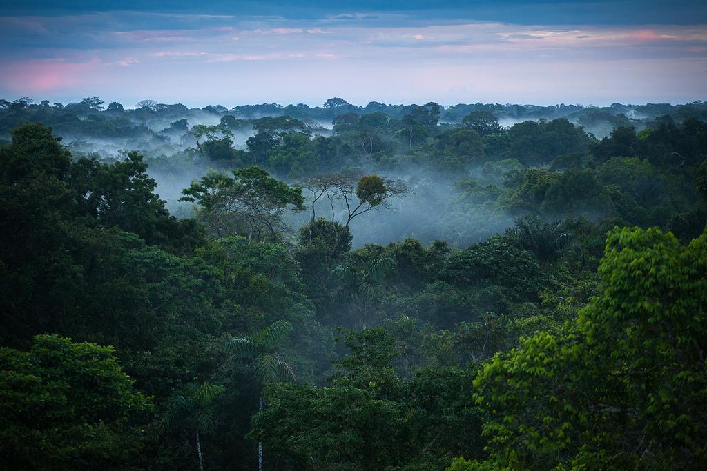 4 days Iquitos Nauta tour