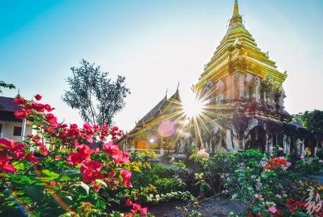 7 Days Thailand Bangkok Ayutthaya Chiang Mai Tour