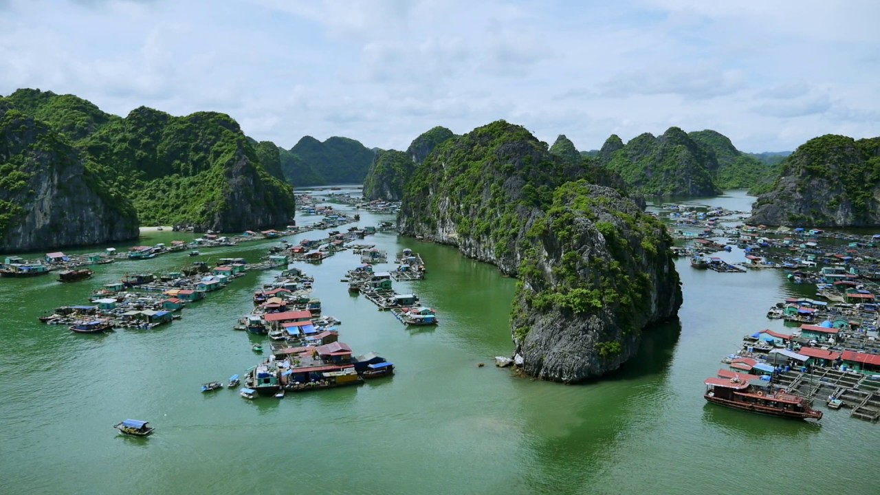 11 Days Hanoi-Ninh Binh-Cat Ba-Halong Bay-Hue-Danang-Hoian-Ho Chi Minh-Can Tho Tour